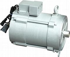 AC motor in glof cart
