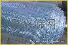 镀锌网铁丝网编织网