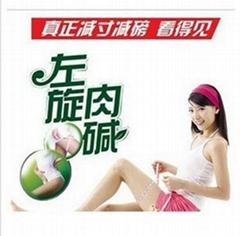 專業認証綠茶左旋肉碱膠囊加工 貼牌 OEM ODM 代加工