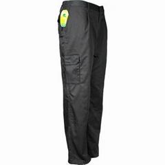 Cargo/ Work Pants