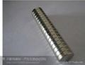 专业生产钕铁硼磁铁,铁氧体,橡磁磁,磁环磁柱磁钢磁纽扣 1