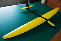 "Hot!!! 60"" composite rc airplane Sunbird"