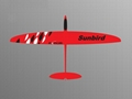 60'' Sunbird rc glider in full carbon