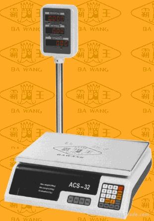 Electronic Computing Scale 1
