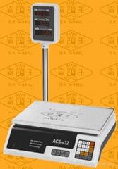 Electronic Computing Scale