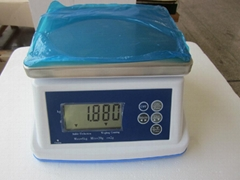 Electronic Waterproof Scale