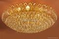 crystal ceiling lighting 3