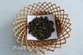 Oolong Tea-Milky Tea  1