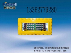 DGS40礦用隔爆型LED巷道燈