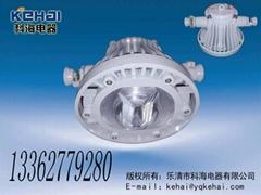 DGS-30/127L礦用隔爆型LED巷道燈