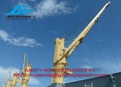 Cylinder Luffing Ship Deck Crane