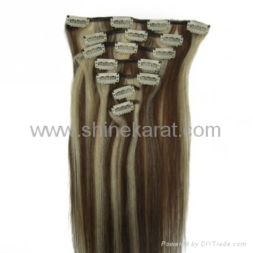 24 Clip In Human Hair Extensions 21
