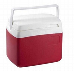 cooler box mould
