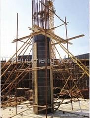 circular column plywood formwork system