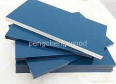 polypropylene(PP) plastic film faced plywood for construction