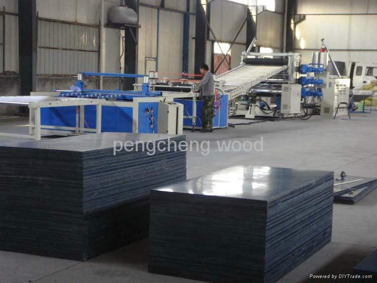 Polypropylene pp plastic film faced plywood for