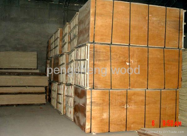 Pp Faced Plywood ~ Polypropylene pp plastic film faced plywood for