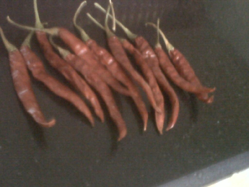 Dried Chillies 5