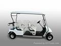 成都IL/FD04電動高爾夫車 1