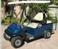 成都IL/FD04電動高爾夫車 2