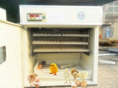 2012 Newest CE Approved Egg Incubator