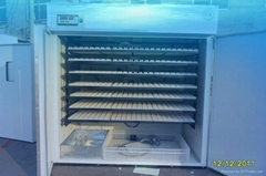 CE Approved Poultry incubator YZITE-14
