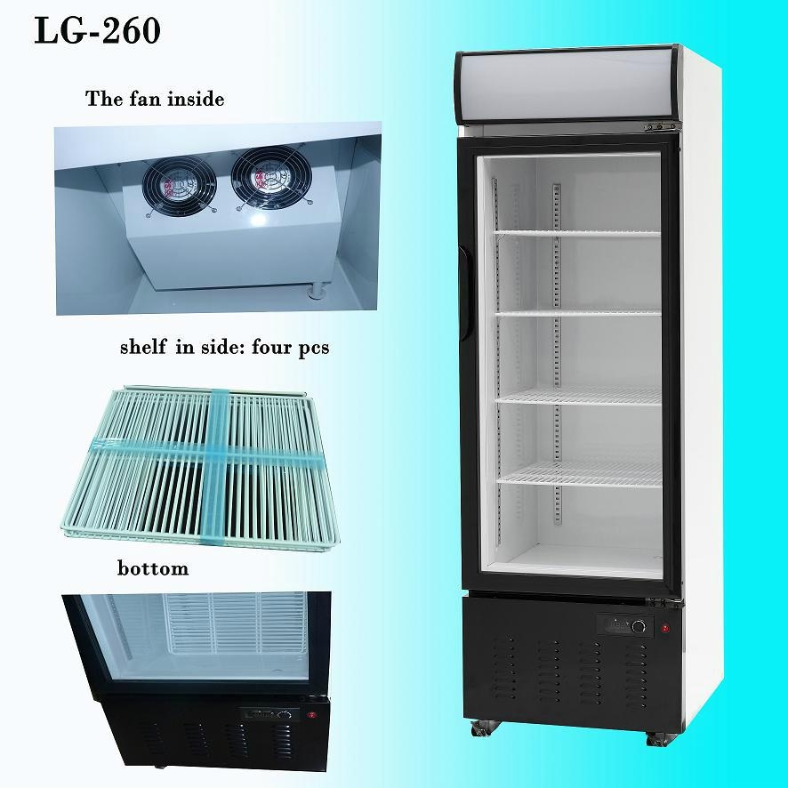 Glass Door Display Refrigerator Showcase Lg 360 Greenhealth