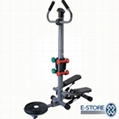 Multifunction stepper with twister