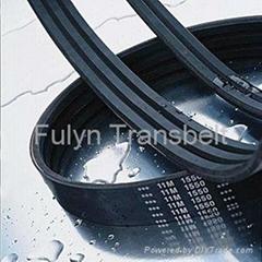 polymax belt