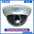 Vandalproof Dome Camera,Sony CCD 600TVL