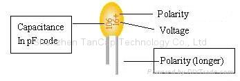 Dipped Tantalum Capacitors 4