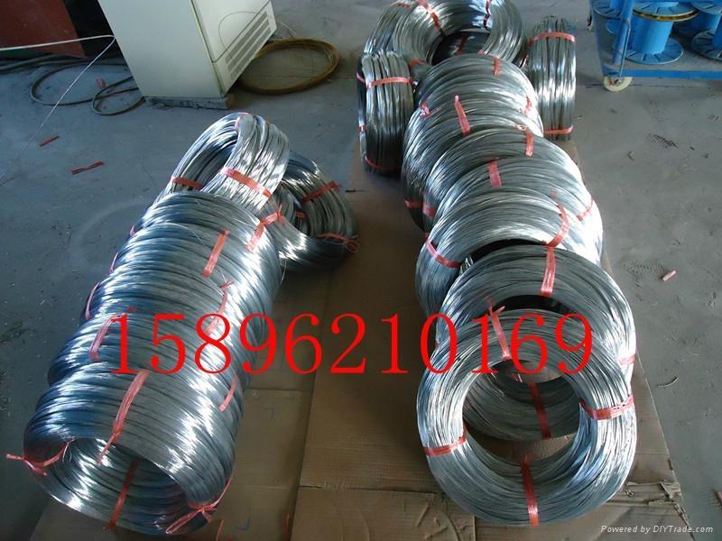 鎧裝線纜用低碳鍍鋅鋼絲 鍍鋅鋼絲 3