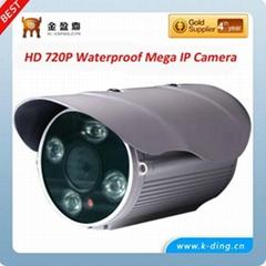 P2P IP Camera with 2 Mega Pxiel 1080P H.264 HD Color Day and Night 50meter IR Di