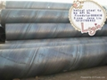 China SSAW Steel Pipe