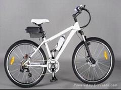 electric bike mountain