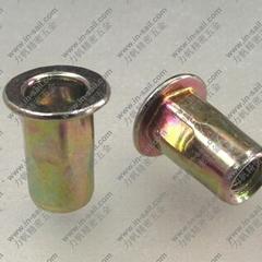 Hex blind rivet nuts