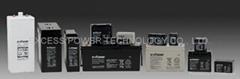 Valve Regulated Lead-Acid Batteries