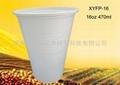 Disposable Environmental 16oz Coffee Cup 2