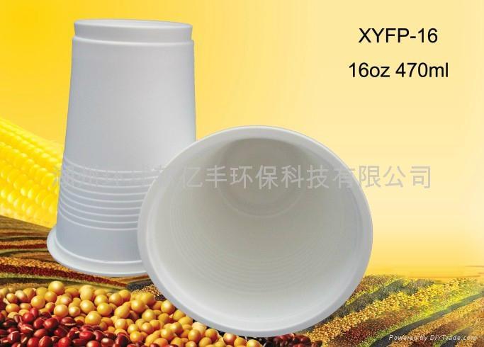 Disposable Environmental 16oz Coffee Cup 3