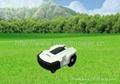 BEST VALUE AUTONOMOUS LAWN MOWER LEAD-ACID BATTERY DENNA  A600 2