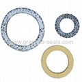 Graphite Packing Ring HBG404 support oem