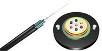 杭州四海光纤 12芯单模光缆