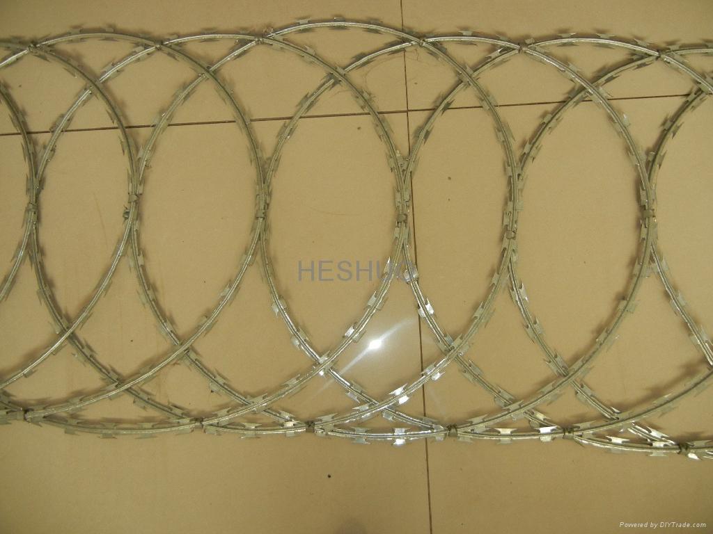 Single Loop Wire : Single loop razor barbed wire hs  heshuo china