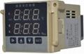 天康供應溫濕度控制器RX-1006 1