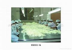 Guangzhou Jiaming Rubber Products Co.,Ltd.