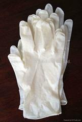 Dental latex gloves