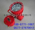 DGS175/127V礦用防爆投光燈 1