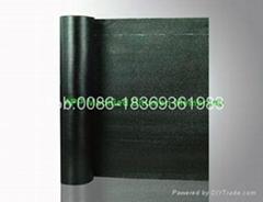 APP modified bitumen membrane