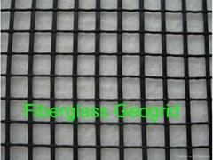 Fiberglass geogrid