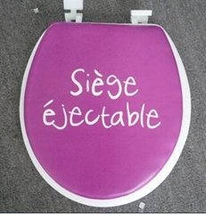Decorative Soft Toilet Seat with Cover